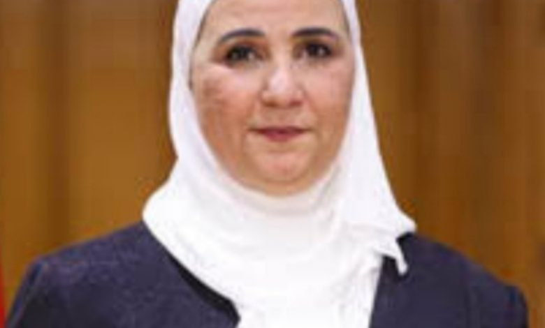 نيفين جامع،وزيرة التجارة والصناعة
