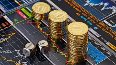 صورة خبير : مصر تخسر 400 مليار جنيه سنويًا…والحل في نشر العملات الرقمية