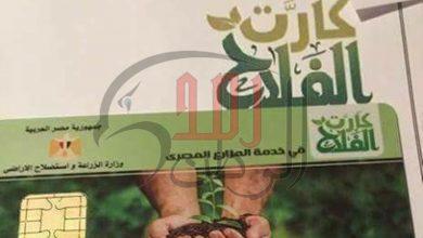 """Photo of """"الزراعة"""" تستعد لإطلاق المرحلة الثالثة من كارت الفلاح الذكي في 6 محافطات"""